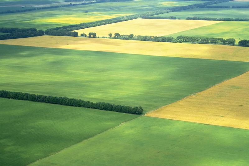 Уряд погодив механізми передачі землі територіальним громадам