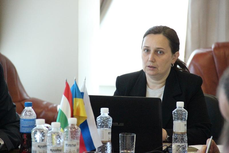 У Закарпатті відбулась зустріч митних експертів з України, Угорщини та Словаччини